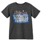 Black Panther T-Shirt for Boys