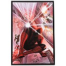 Spider-Man ''With Great Power'' Giclée by Alex Ross - Limited Edition